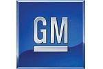 GM_Telematics_Wire_logo