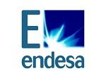 Endesa_Telematics_Wire_logo